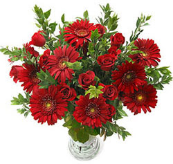 5 adet kirmizi gül 5 adet gerbera aranjmani  Sivas çiçek satışı