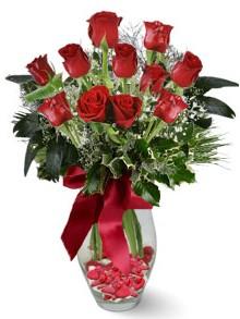 9 adet gül  Sivas hediye çiçek yolla  kirmizi gül