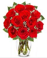 12 adet vazoda kıpkırmızı gül  Sivas internetten çiçek siparişi