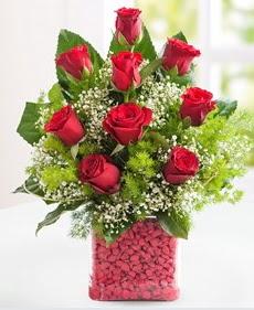 Cam içerisinde 9 adet kırmızı gül  Sivas hediye çiçek yolla