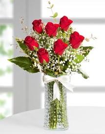 Cam vazoda 7 adet kırmızı gül  Sivas çiçek gönderme