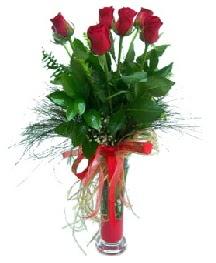 vazo içerisinde 5 kırmızı gül  Sivas çiçek servisi , çiçekçi adresleri