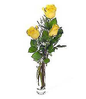 Sivas çiçek siparişi sitesi  3 adet kalite cam yada mika vazo gül