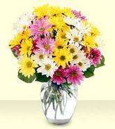 Sivas çiçek siparişi sitesi  mevsim çiçekleri mika yada cam vazo