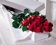 Sivas çiçek yolla  özel kutuda 12 adet gül