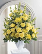 Sivas ucuz çiçek gönder  sari güllerden sebboy tanzim çiçek siparisi