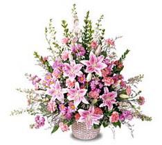 Sivas ucuz çiçek gönder  Tanzim mevsim çiçeklerinden çiçek modeli
