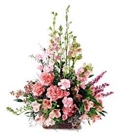 Sivas çiçekçi telefonları  mevsim çiçeklerinden özel