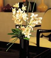 Sivas çiçekçi mağazası  cam yada mika vazo içerisinde dal orkide