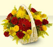 Sivas cicek , cicekci  sepette mevsim çiçekleri