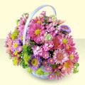 Sivas çiçek mağazası , çiçekçi adresleri  bir sepet dolusu kir çiçegi  Sivas online çiçekçi , çiçek siparişi