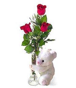 oyuncak ve 3 adet gül  Sivas ucuz çiçek gönder