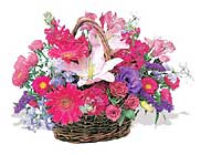 küçük karisik özel sepet   Sivas 14 şubat sevgililer günü çiçek