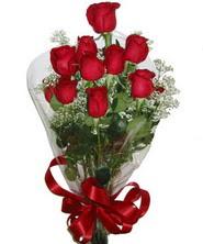 9 adet kaliteli kirmizi gül   Sivas kaliteli taze ve ucuz çiçekler