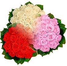 3 renkte gül seven sever   Sivas çiçek gönderme