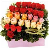 15 adet renkli gül ve cam   Sivas çiçek , çiçekçi , çiçekçilik