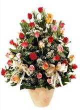 91 adet renkli gül aranjman   Sivas online çiçekçi , çiçek siparişi