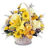 sadece sari çiçek sepeti   Sivas online çiçekçi , çiçek siparişi