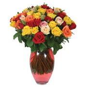51 adet gül ve kaliteli vazo   Sivas online çiçekçi , çiçek siparişi