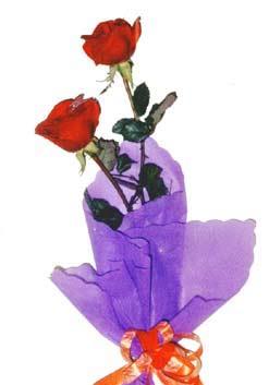 2  adet kirmizi gül buketi   Sivas çiçek gönderme