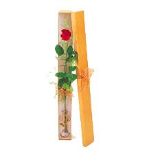 ince  kutuda  1  gül   Sivas çiçek yolla , çiçek gönder , çiçekçi