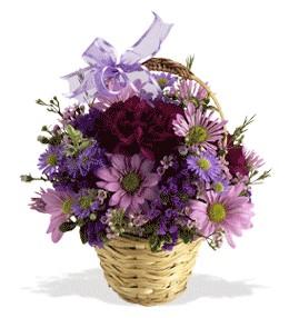 Sivas online çiçek gönderme sipariş  sepet içerisinde krizantem çiçekleri