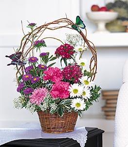 Sivas çiçek siparişi vermek  sepet içerisinde karanfil gerbera ve kir çiçekleri