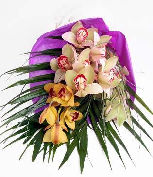 Sivas çiçek siparişi vermek  1 adet dal orkide buket halinde sunulmakta