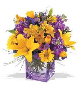 Sivas hediye sevgilime hediye çiçek  cam içerisinde kir çiçekleri demeti