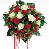 Sivas çiçekçi telefonları  6 adet kirmizi 6 adet beyaz ve kir çiçekleri buket