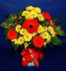 Sivas çiçekçi telefonları  sade hos orta boy karisik demet çiçek