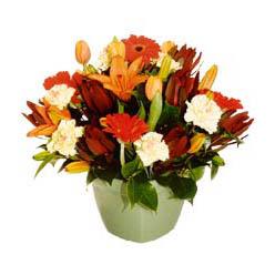 mevsim çiçeklerinden karma aranjman  Sivas güvenli kaliteli hızlı çiçek