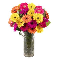 KARISIK GERBERALARDAN CAM VAZO TANZIMI  Sivas çiçek servisi , çiçekçi adresleri