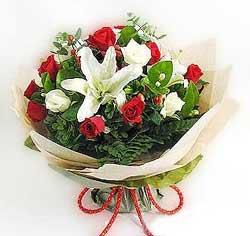 güller ve kazablanklardan görsel bir buket  Sivas hediye çiçek yolla
