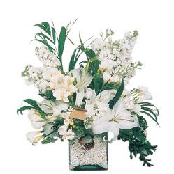 Sivas çiçek siparişi sitesi  sadece beyazlardan olusmus mevsim cam yada mika tanzim