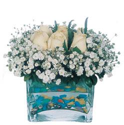 Sivas çiçek , çiçekçi , çiçekçilik  mika yada cam içerisinde 7 adet beyaz gül