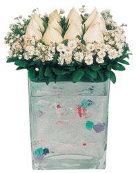 Sivas çiçek , çiçekçi , çiçekçilik  7 adet beyaz gül cam yada mika vazo tanzim