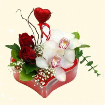Sivas uluslararası çiçek gönderme  1 kandil orkide 5 adet kirmizi gül mika kalp