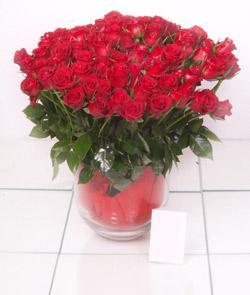 Sivas internetten çiçek siparişi  101 adet kirmizi gül