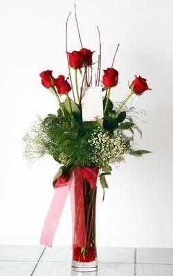 Sivas çiçek siparişi vermek  6 adet kirmizi gül ve cam yada mika vazo