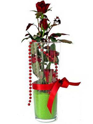 Sivas çiçekçiler  Cam yada mika içerisinde 9 adet kirmizi gül - sevdiklerinize özel