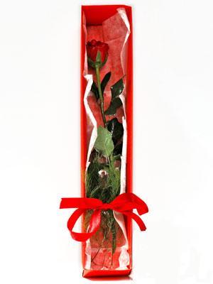 Sivas çiçek mağazası , çiçekçi adresleri  1 adet kutuda gül