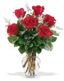 Sivas online çiçekçi , çiçek siparişi  7 adet kirmizi gül cam yada mika vazoda sevenlere
