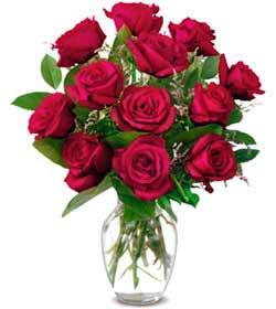 Sivas çiçekçiler  1 düzine kirmizi gül sevenlere özel vazo gülleri