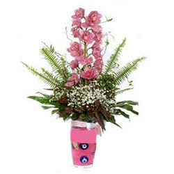 Sivas çiçek satışı  cam yada mika vazo içerisinde tek dal orkide çiçegi