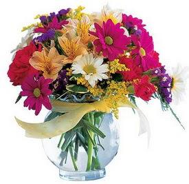 Sivas hediye çiçek yolla  cam yada mika içerisinde karisik mevsim çiçekleri