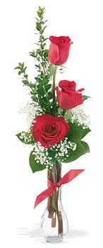Sivas çiçek siparişi vermek  mika yada cam vazoda 3 adet kirmizi gül