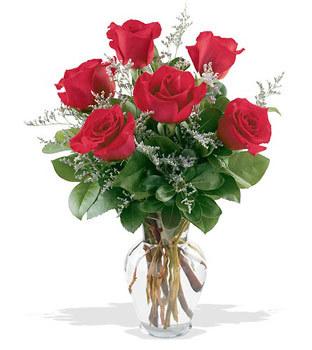 Sivas çiçek siparişi vermek  cam yada mika vazoda 6 adet kirmizi gül