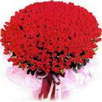 Sivas kaliteli taze ve ucuz çiçekler  1001 adet kirmizi gülden çiçek tanzimi