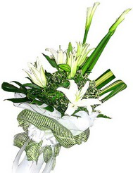 Sivas çiçek servisi , çiçekçi adresleri  3 dal kazablanka çiçegi ve yesillikler